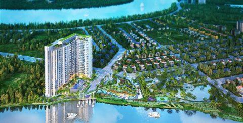 Dự án căn hộ D'lusso có gì hấp dẫn?